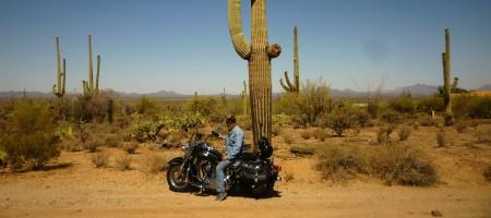 moto cactus usa