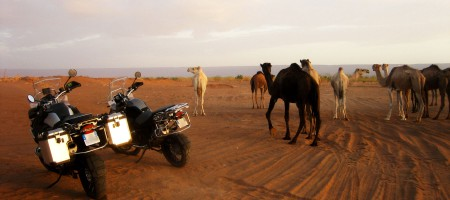 roadtrip moto maroc