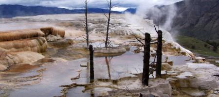 paysage yellowstone