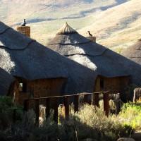 logement safari kruger